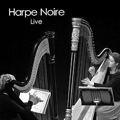 Harpe noire live.jpg