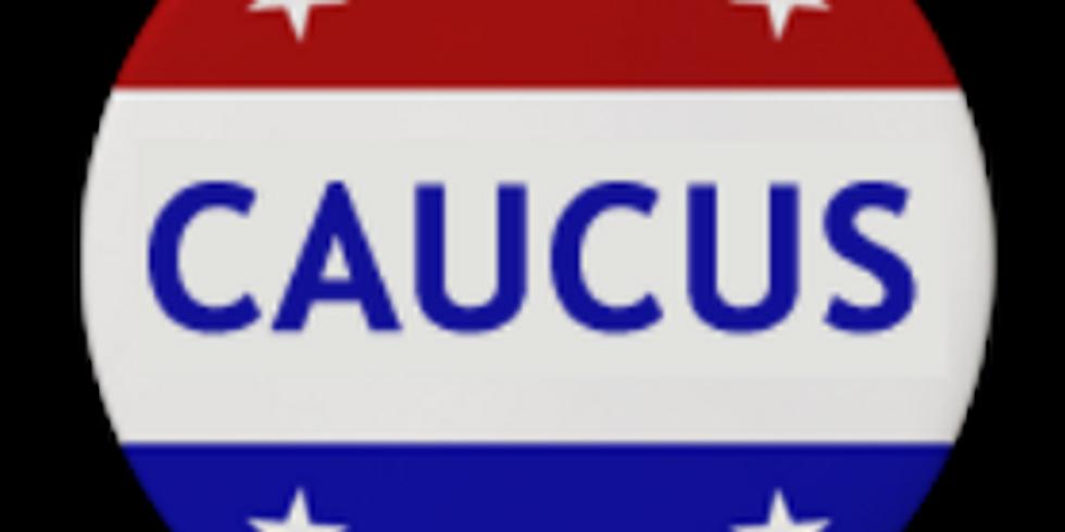 Hillsborough County Democratic Caucus