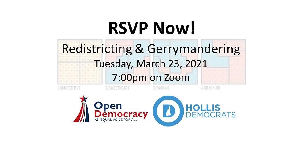 Hollis Democrats March Meeting