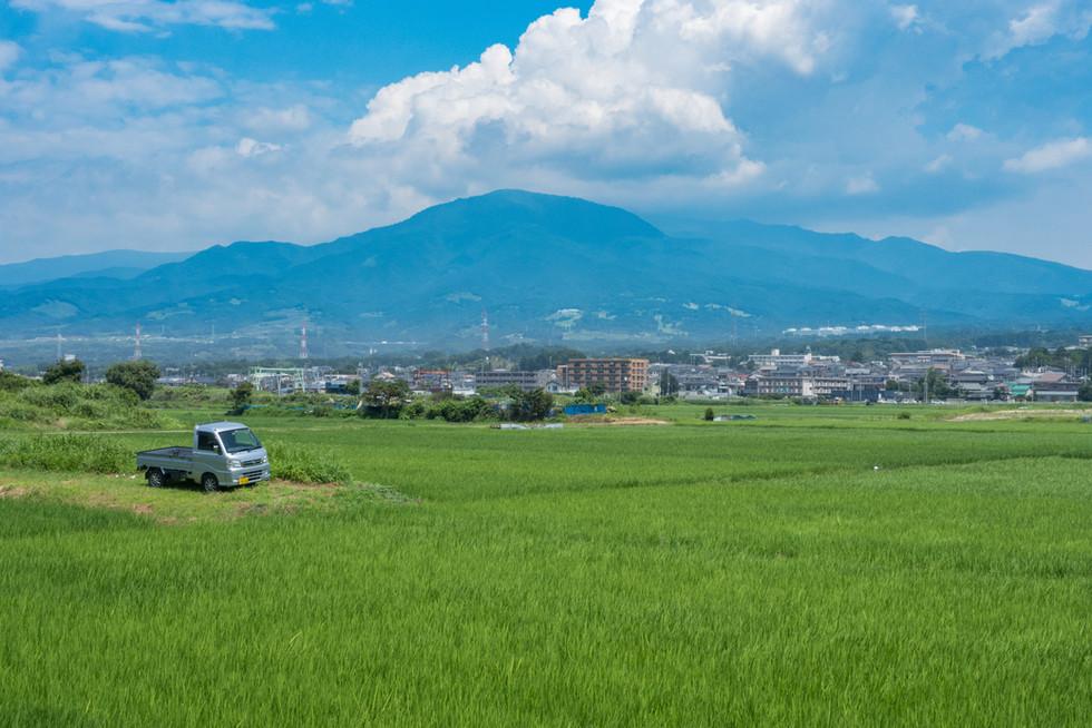 Shizuoka_[07-18]-7180049.jpg