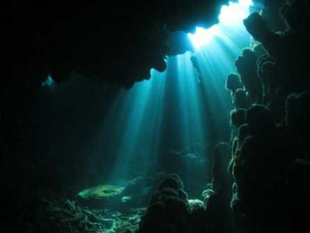 The Ocean Twilight Zone