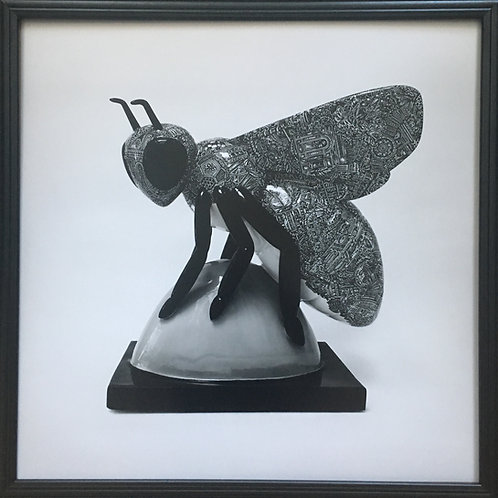 Manchester Bee Photo print (60cm x 60cm framed) | Limited Edition of 75
