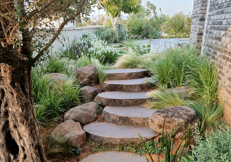 עיצוב מסלעה בגינה - האורן עיצוב גינות