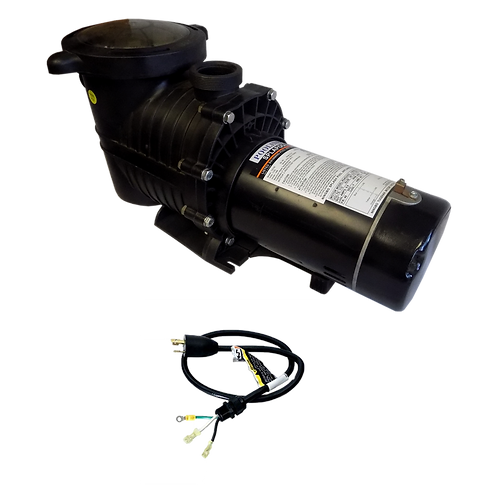 12751TL Two Speed Pump for ING Pools, 1.5 HP/230 V with Controller