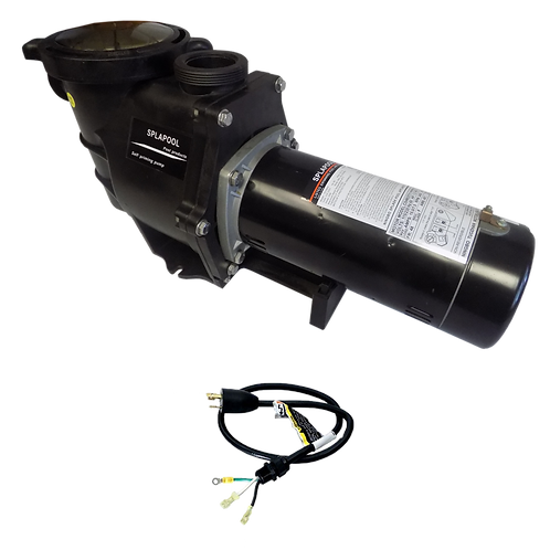 12754TL Two Speed Pump for ING Pools, 1 HP/115 V with 3' Twist Lock Cord