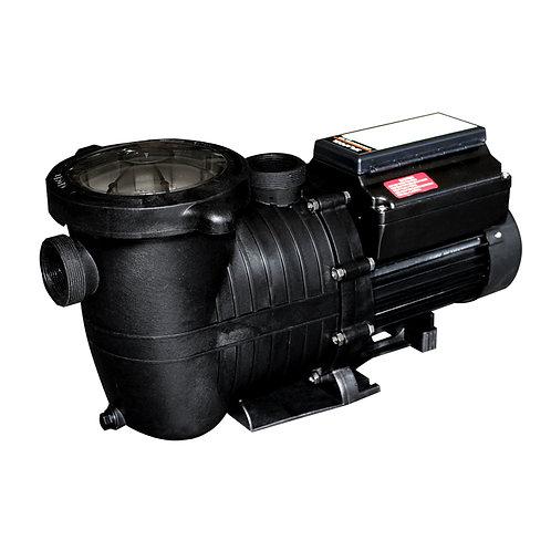 12550 Variable Speed Pump