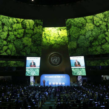 TO CREATE WITH PURPOSE- THE ELECTRIC ELEPHANT/ THE UNITED NATIONS- CLIMATE ACTION SUMMIT 2019 Septem