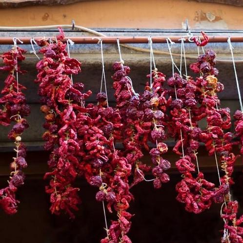 Peperoncino Garlic Agrumato EVOO