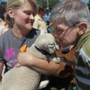 man kissing baby lamb outdoors
