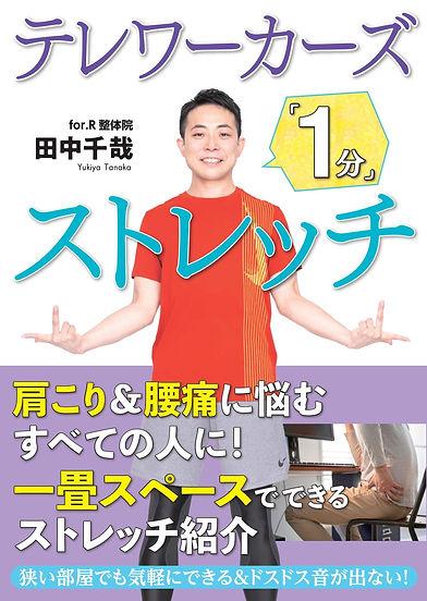 stretch_cover+obi_1113.JPG