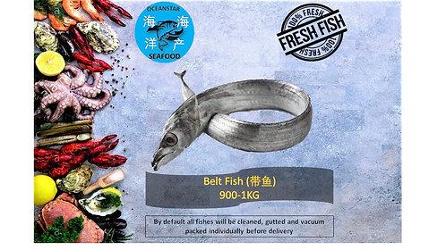 Belt Fish (带鱼) 900-1KG