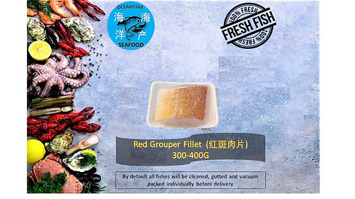 Red Grouper Fillet (红斑肉) 300- 350G