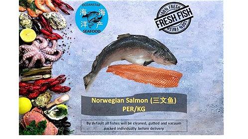 Norwegian Salmon(三文鱼)/ Per Kg