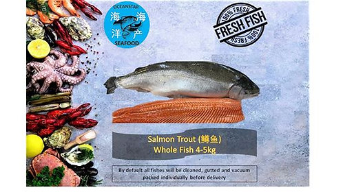Salmon Trout (鳟鱼)/per Kg Whole Fish 4-5kg / Fillet Steak $38/per Kg