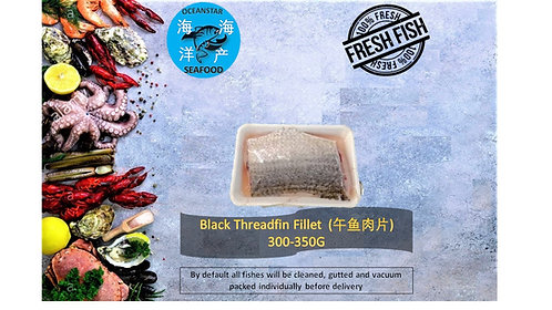 Black Threadfin Fillet (午鱼肉片) 300-350G