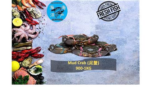 Mud Crab (泥蟹 ) 900-1KG/PC