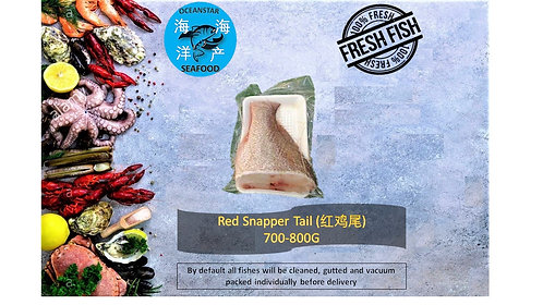 Red Snapper Tail (红鸡肉) 700-800G