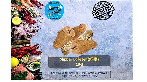 Slipper Lobster (虾婆) 1KG