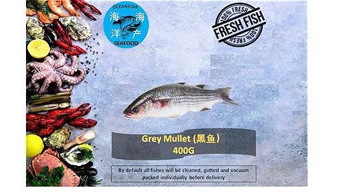 Grey Mullet ( 黑鱼) 400G