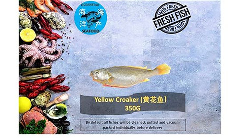 Yellow Croaker ( 黄花鱼) 350G