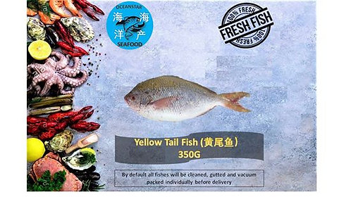 Yellowtail Fish (黄尾鱼) 350G