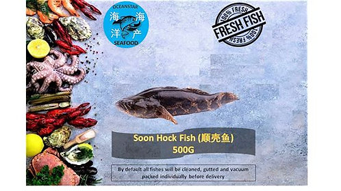 Soon Hock Fish (笋壳鱼) / 500G
