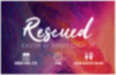 rescued web promo.jpg