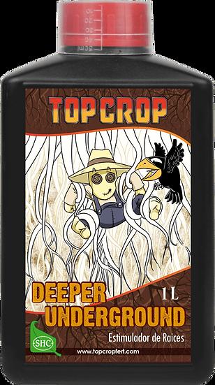 Deeper Underground 1L