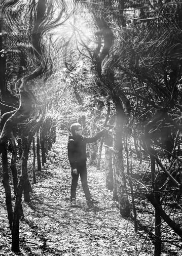 Quinten in Wonderland.mov