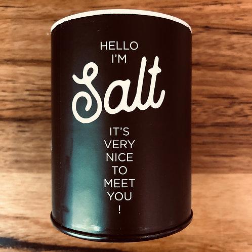 Fun Salt Shaker