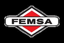 femsa-logo.png