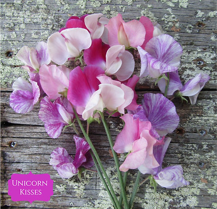 Unicorn Kisses Sweet Pea Mix