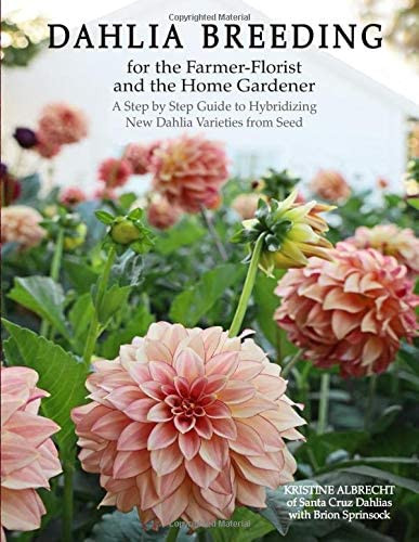 Dahlia Breeding for the Farmer-Florist and the home Gardener