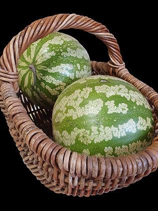 Jam Melon - Citron