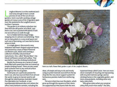 Jennifer Stackhouse article on Kerin-Lea Hall (Tasmania)