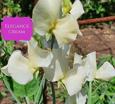 Elegance Cream