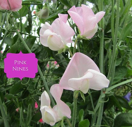 Pink Nines