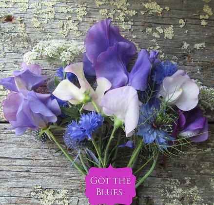 Got the Blues Sweet Pea & Flower Mix