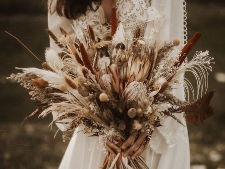 Dried Flowers & Seed Pods