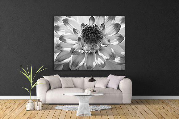 Art - Dahlia Diligence (black & white)