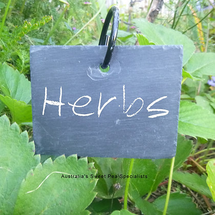 Plant Tags Hanging Slate - Set of 2 & White Crayon