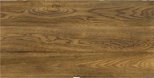Wood-Thrush.png