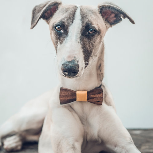 Bow Ties for Dogs - Walnut
