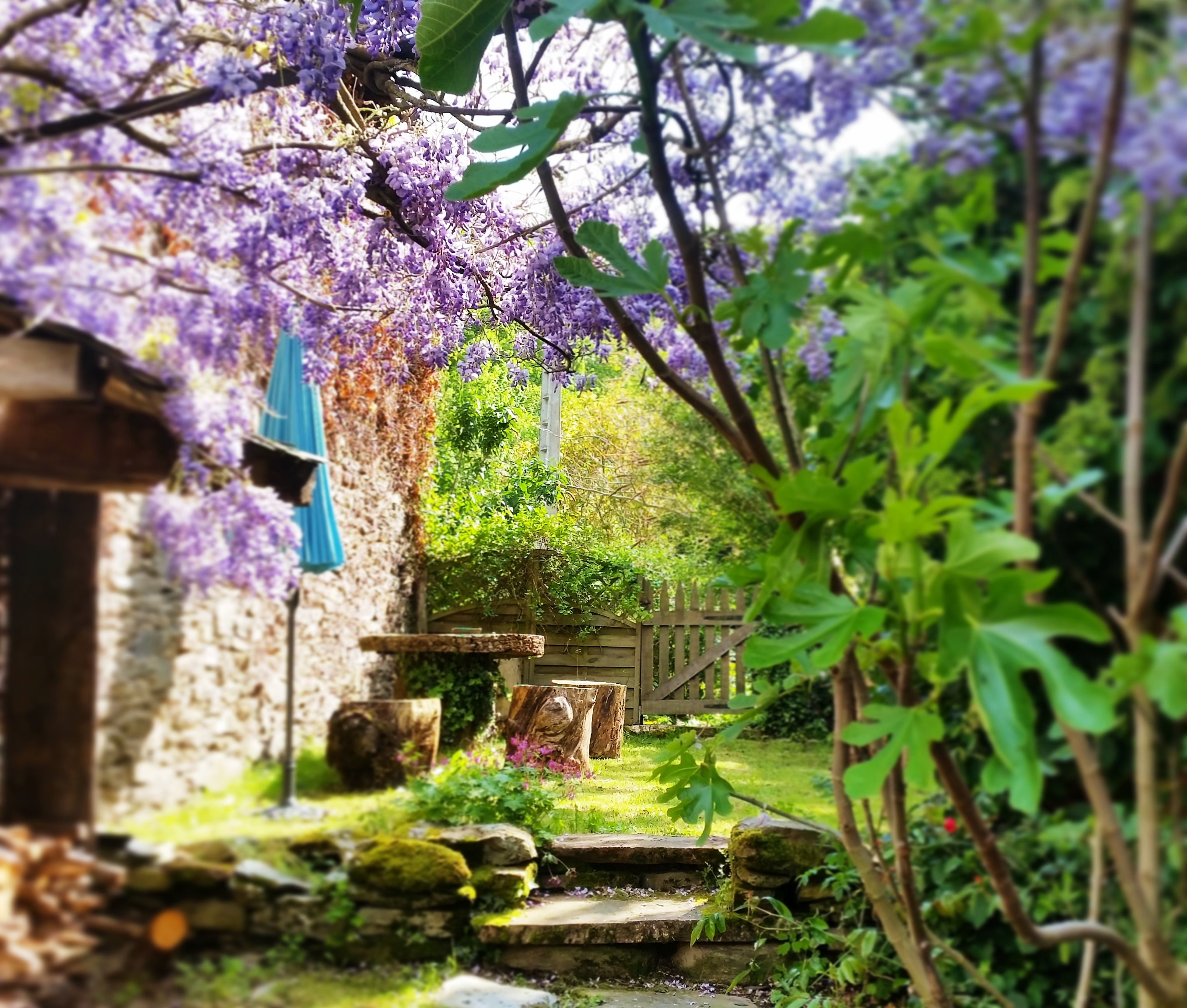 Gite garden in May
