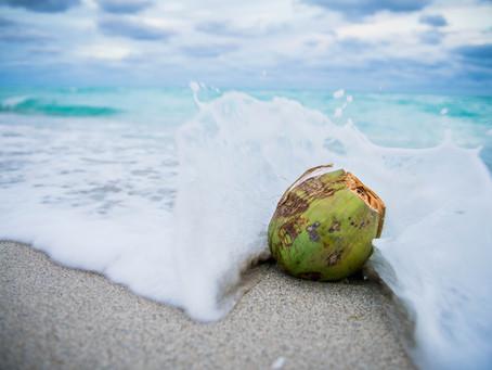OMG...I am becoming a coconut!