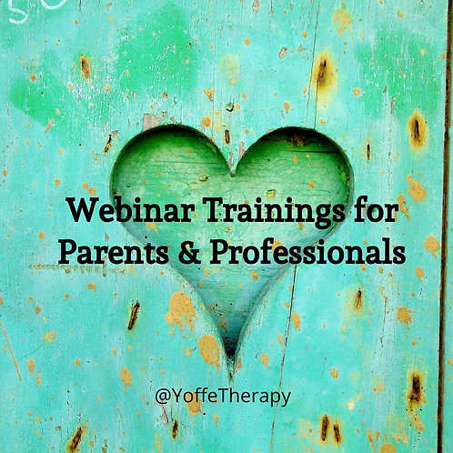 Trauma-Informed Support for Families with Bryan Post & Jeanette Yoffe MFT PartII