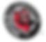 Huntsville Havoc Logo_edited.png