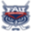 the-puck-stops-here-fau-florida.png