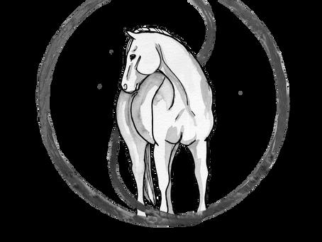 Understanding the Relationship between Hoof Balance and the Equine Neck
