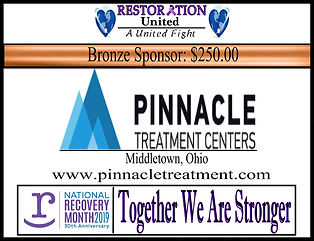 Pinnacle Treatment Bronze Sponsor.jpg